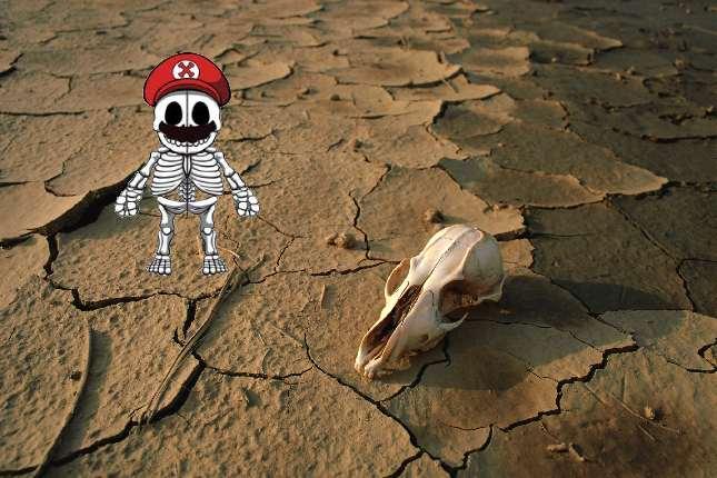 skeleton_desert